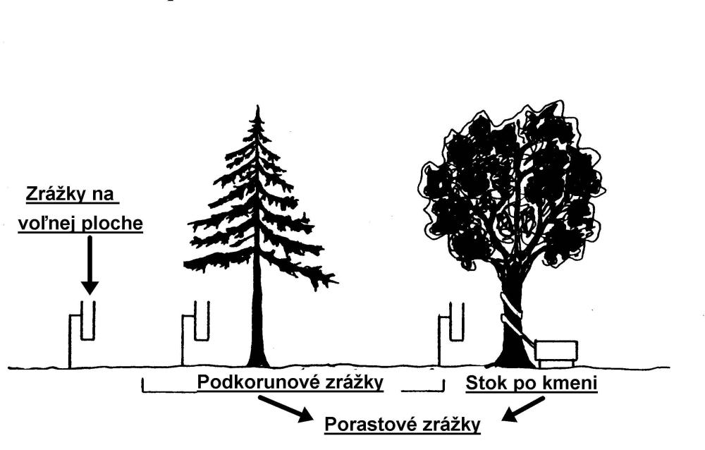 stromy.png