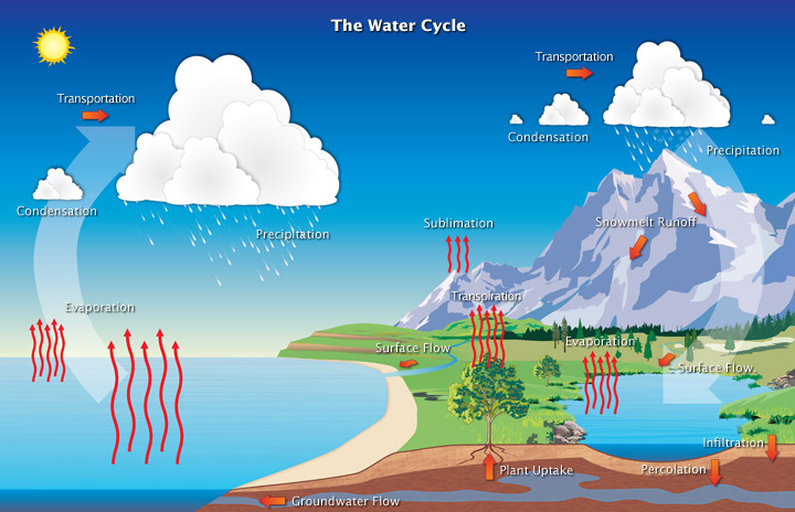 water_cycle.jpg
