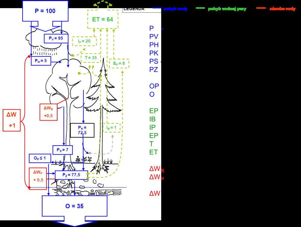 obr-3-znazornenie-pohybu-vody-v-lesnom